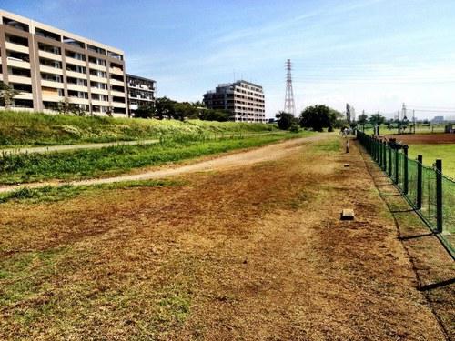 2012/09/13 ラン 6km。