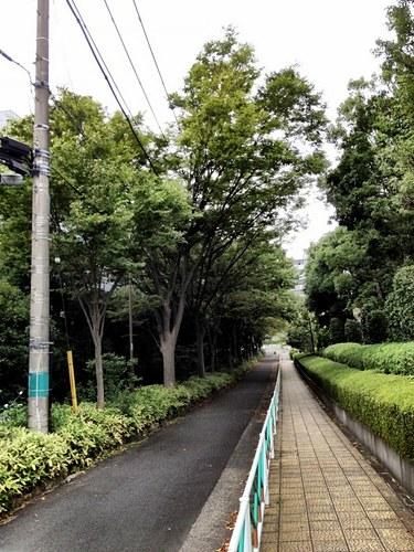 2012/09/16 ラン 6km。